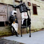 Skull n Bone